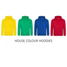 Millennium House Colour Hoodie with school logo