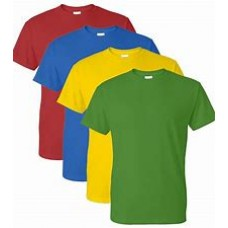 Harris primary Orpimgtom PE T-shirt house colour