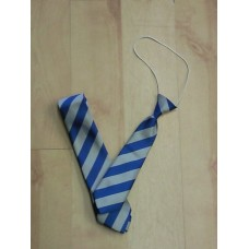 Brampton School Regular Tie